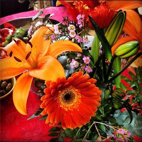 Wedding Flower decoration in Jhansi