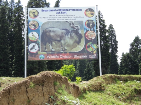 Finding best places to explore wildlife of Jammu and Kashmir
