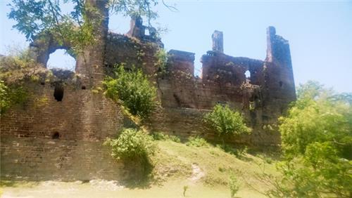 Bashohli Fort