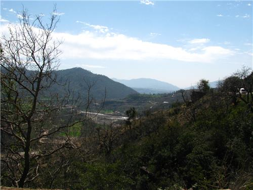 View from Batote