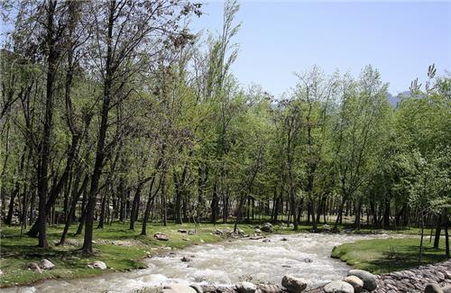 Jhelum River Flowing Close to Duru Vering