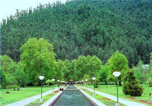 Mughal Garden at Verinag