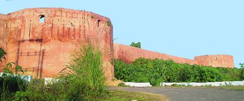 Jandi Fort