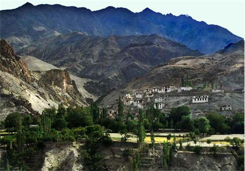 Dha Village in Leh