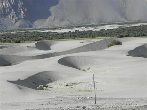 About Hunder Sand Dunes in Leh