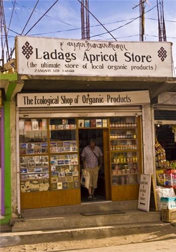 Ladakh Apricot Store