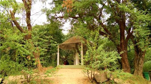 Allen Forest Kanpur Location