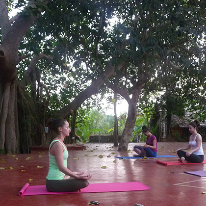 Namaste Yoga Farm