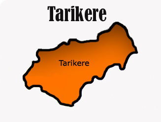 Geography of Tarikere