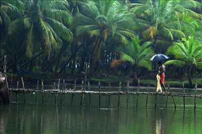 Why you should discover Coorg