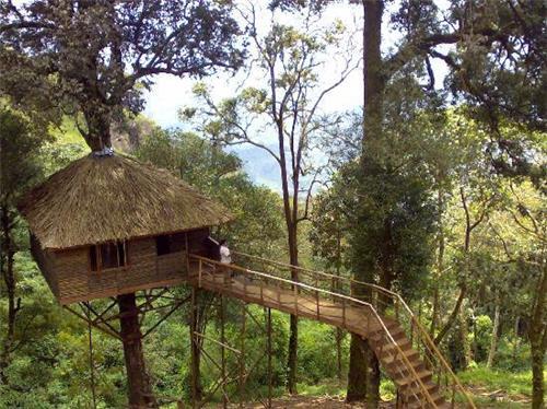 Nature Zone Junglepark, Munnar
