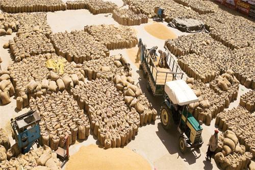 Grain Mandi of Khanna