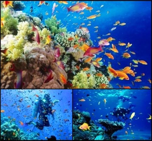 Adventure Sports Tourism Lakshadweep