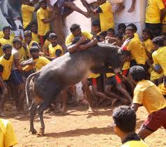 Festivals in Alanganallur