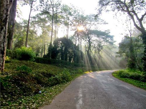 Kalyan Nirmal Highway