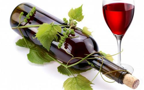 Wine Shops and Bars in Alibag