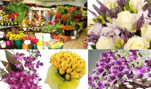 Florists in Amravati