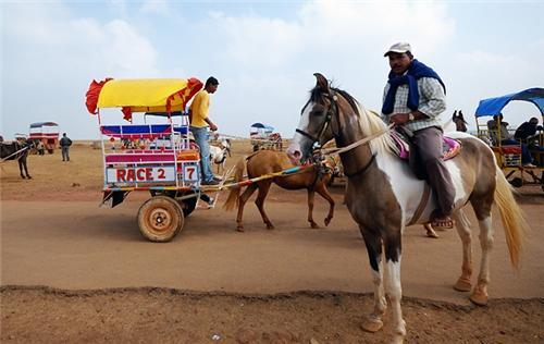 Travel to Mahabaleshwar