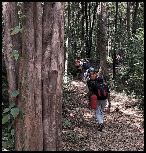 Trekking in Mangalore