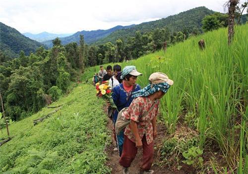 Agriculture in Mizoram