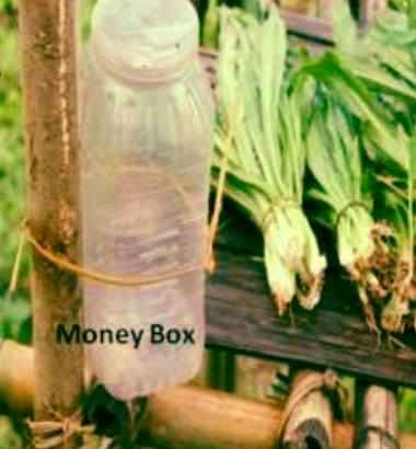 money box mizoram