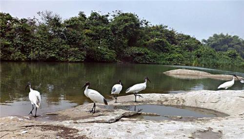 Wildlife Sanctuary near Mysore