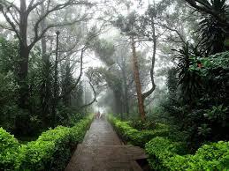 Nandi Hills near Mysore