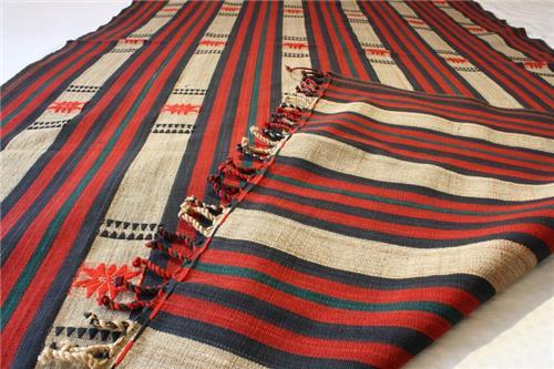 Symbols and designs of naga weaves