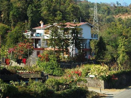 Greenwood Villa Homestay