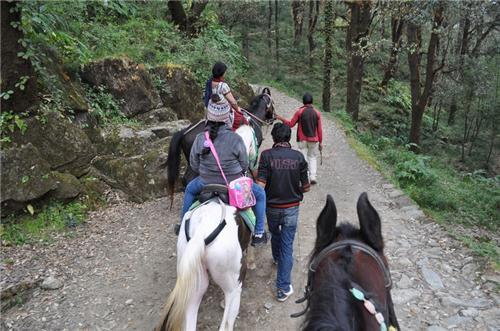 Trekking Nainital