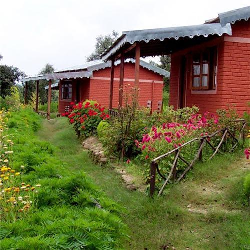 Sonapani Himalayan Village in Nainital Route