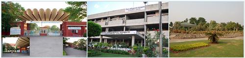 Munical Corporation Panchkula