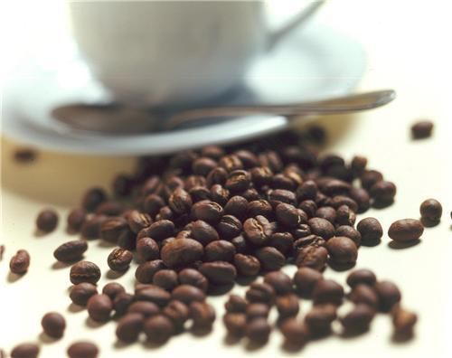 Cafes in Panchkula