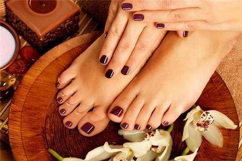 Beauty treatment parlours in Panipat