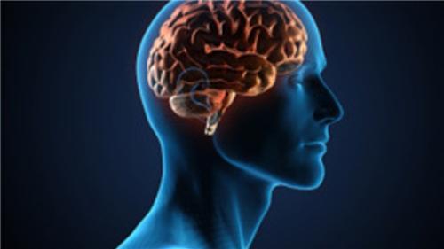 Mental health in Panipat