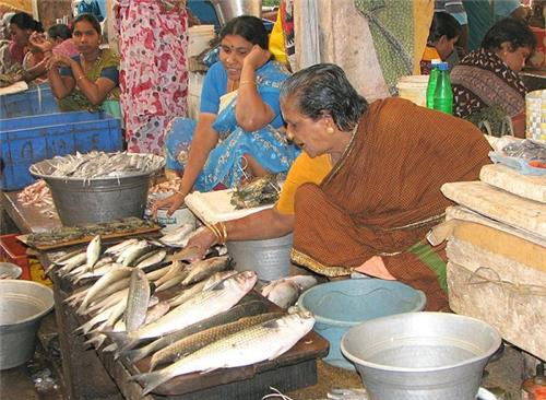 Pondy Fish Market