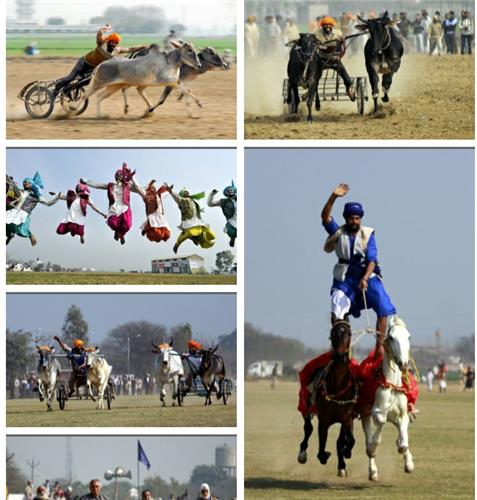 Sports Festival Held in Punjab