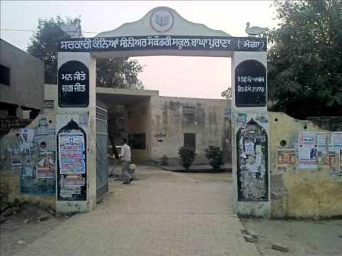 About Bagha Purana
