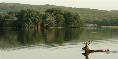 Padam Talao Lake in Ranthambore