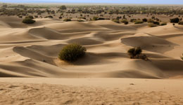 Exotic Sand Dunes of Rajasthan