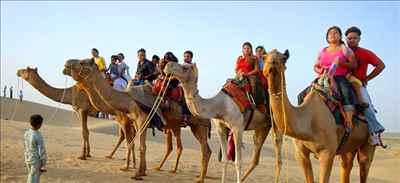 Camel Rides in Rajasthan