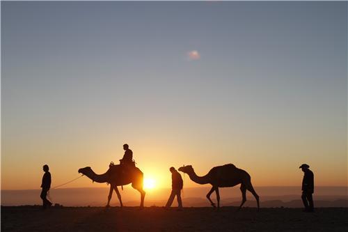 Tourist spots in Pushkar
