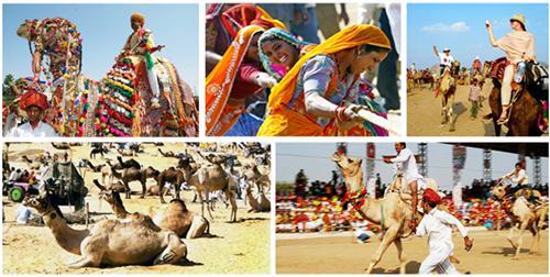 Fairs and Festivals in Pushkar