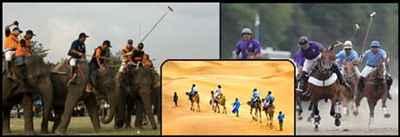 http://im.hunt.in/cg/raj/about/sports/m1m-sports-rajasthan.jpg