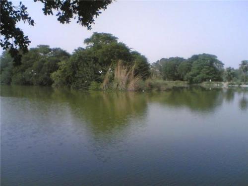 Tilyar Lake in Rohtak