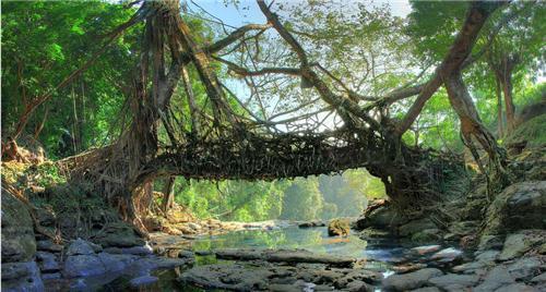 Weekend Trips from Meghalaya