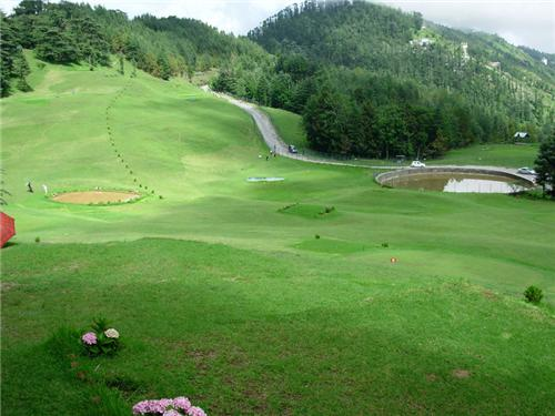The beauty of Naldehra Golf Course