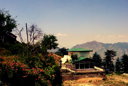 Cedar Hill Lodge, Shimla