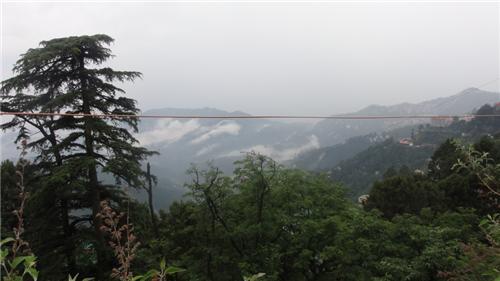 Botany Hiil, Shimla