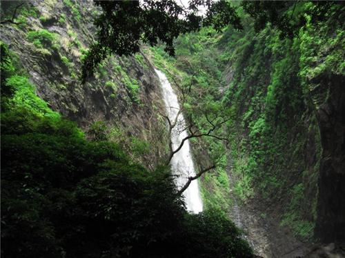 Barkana & Kunchikal Falls at Agumbe